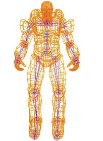 Mesh Skeleton